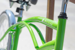 Regions Bicycle