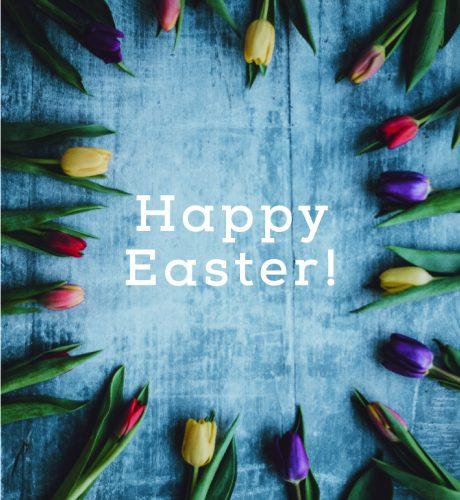 Easter Tulips E-Card